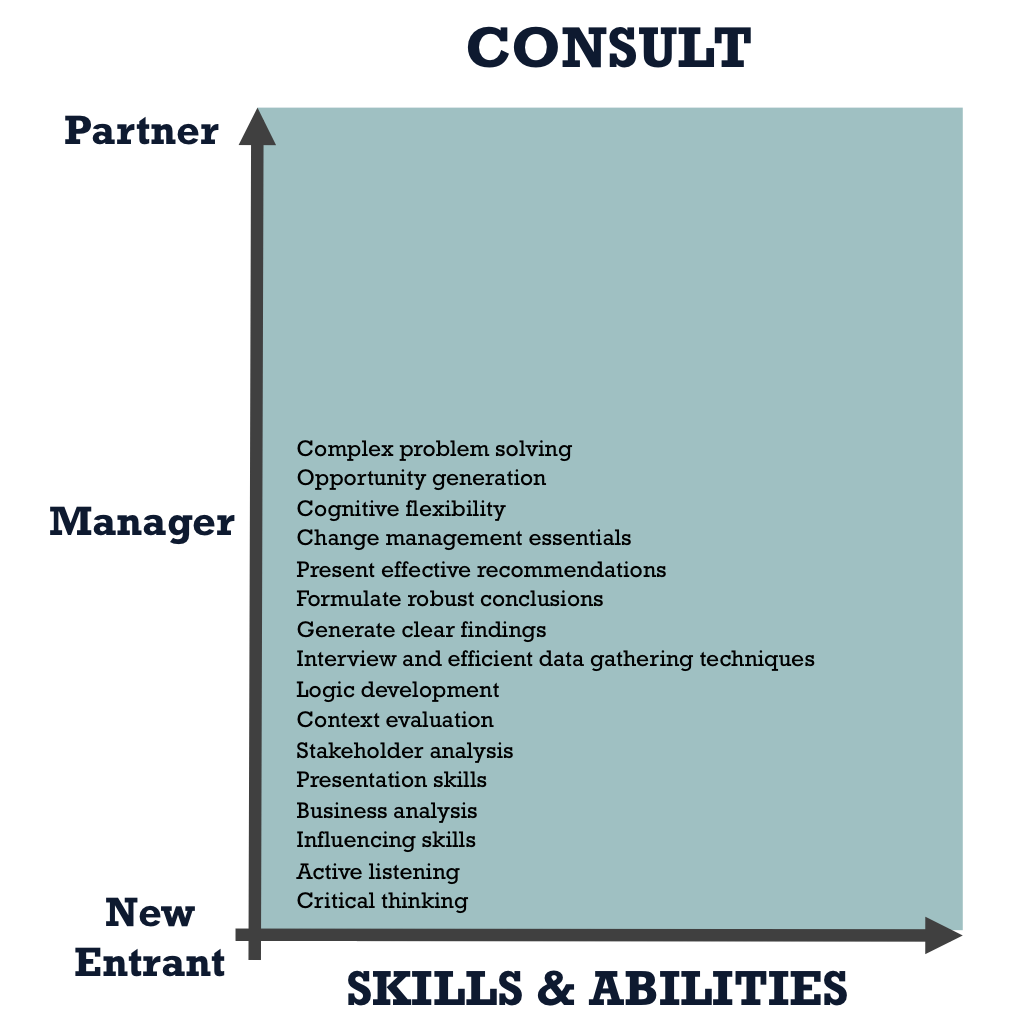 Consult Core Skills and Abilities